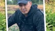 Яблоневый сад в Казахстане