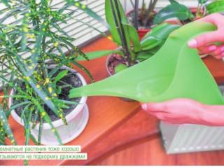 Дрожжи в саду и огороде
