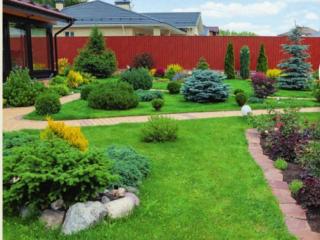 Сад для контральто Ольги Голицыной
