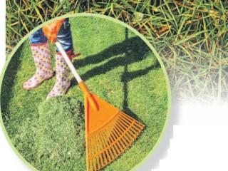 Восстанавливаем газон после зимы
