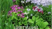 Цветы в мае