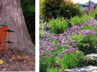 Уэльский ботанический сад