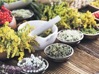 Вместо лекарств - травяной чай